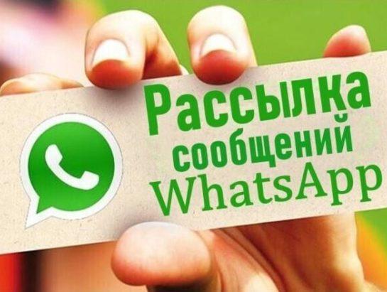 Рассылка сообщений в WhatsApp